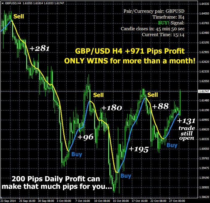 200 pip Daily Profit