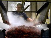 Hungry for crawfish? They're already out there. This season, the mudbugs are promised to be plentiful and well-priced. As of noon Thursday (Jan. 29), boiled crawfish in the New Orleans area cost on average $5.81 per pound.