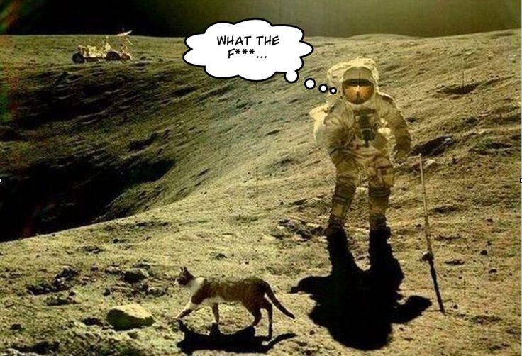"""""""Houston, on a un problème"""", célèbre phrase, prononcée durant la mission Apollo 13"""
