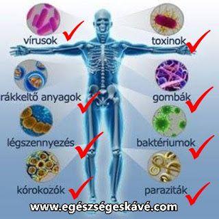 egészségesen  élni!: 8 aljas támadó az életedre tör és Te tétlenül néze...