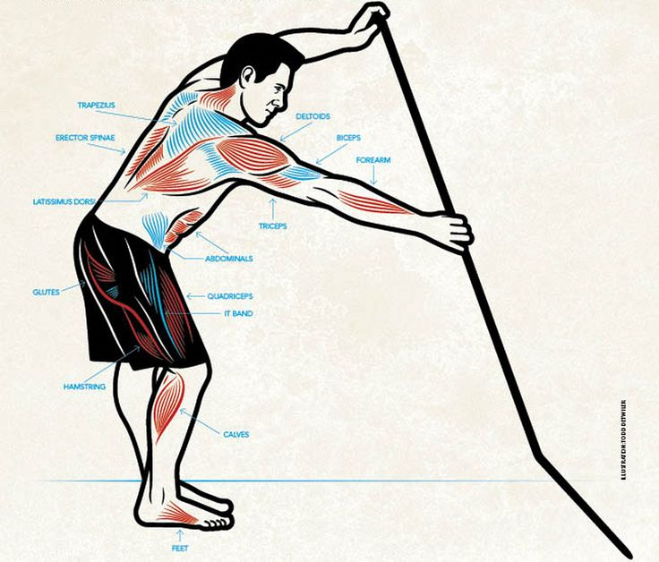The Right Muscles To Use During A Standup Paddle Stroke