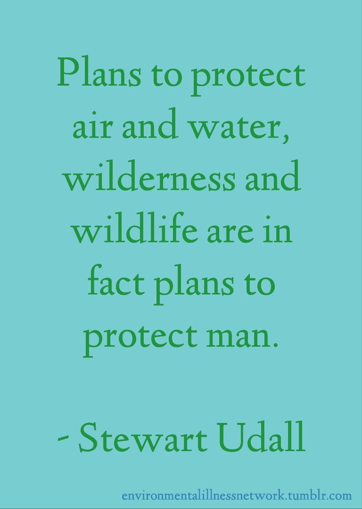 best protect save our planet images   plans to protect air and water wilderness and wildlife are in fact plans to save planet earthsave