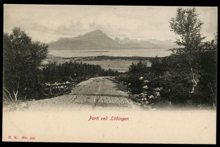 Nordland fylke Lødingen kommune Næroversikt med vei, sjø og fjell. Vinter. 1903 Utg NK