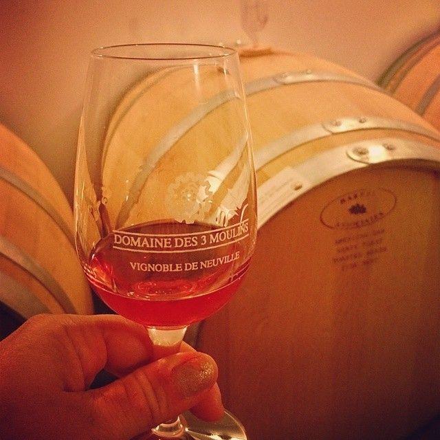 Le vignoble Domaine des 3 moulins, destination terroir des Fêtes Gourmandes encore cette année.