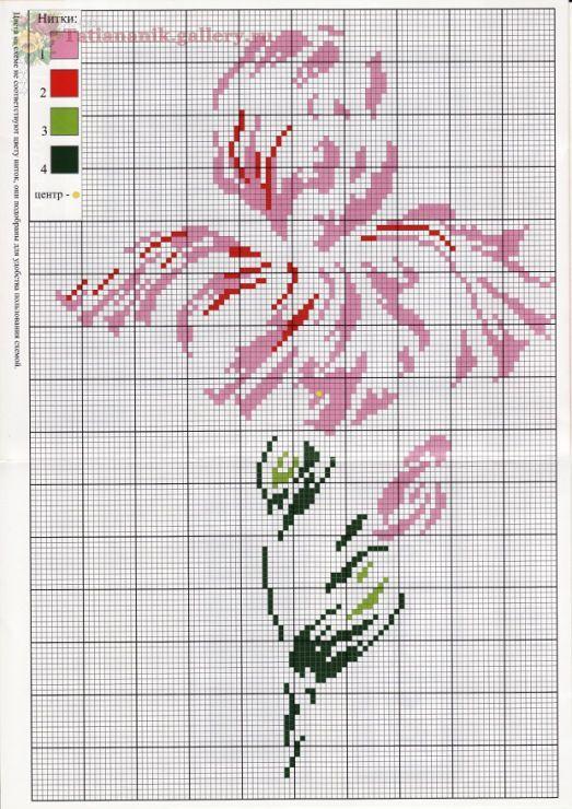 Beautiful iris cross stitch design.