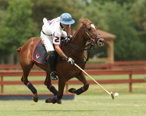 polo is a game that essay Polo is a game that is played on horses the rider of that horse use a stick to hit  the little white ball a polo match lasts about one and one-half hours and is.