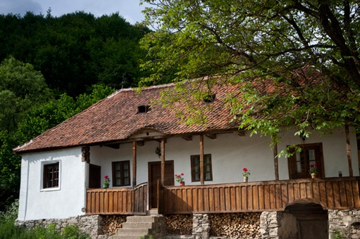 The Prince of Wales's properties at Zalanpatak, Transylvania