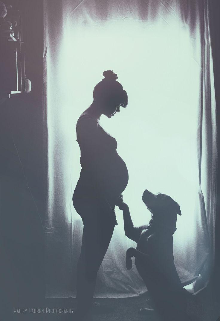 Meine 9-jährige amerikanische Bulldogge / Pitbull-Mischung mit meiner schwangeren Frau – Dogs – small and tall