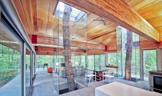 Travis Price Architects' Hayes Residence Literally Blends into the Forests of West Virginia | Inhabitat - Sustainable Design Innovation, Eco Architecture, Green Building