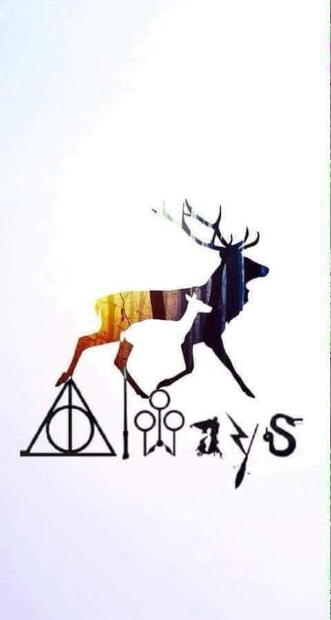 Always love HP