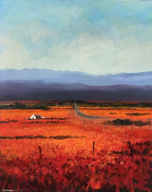 Road to Namaqualand by Mauro Chiarla | Landscape Artwork | Fine Art Portfolio