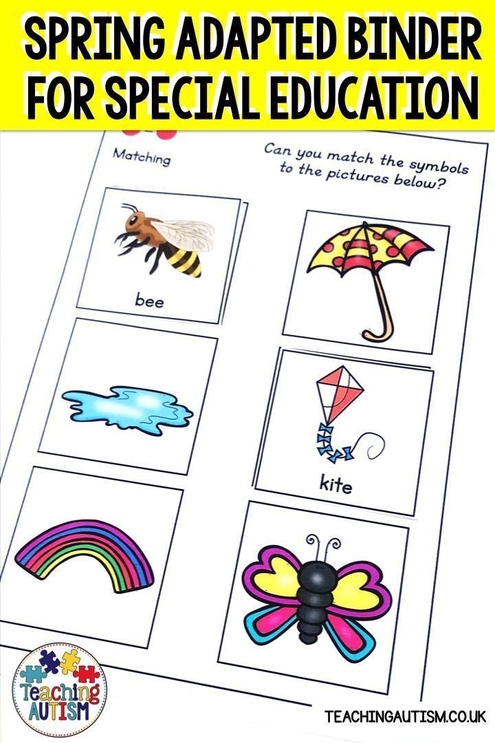 Spring Adapted Book for Special Education