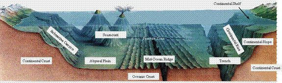 geologic landforms of the ocean floor | Image obtained fromhttp://www.bssd.k12.pa.us/earth/Publish/index.html