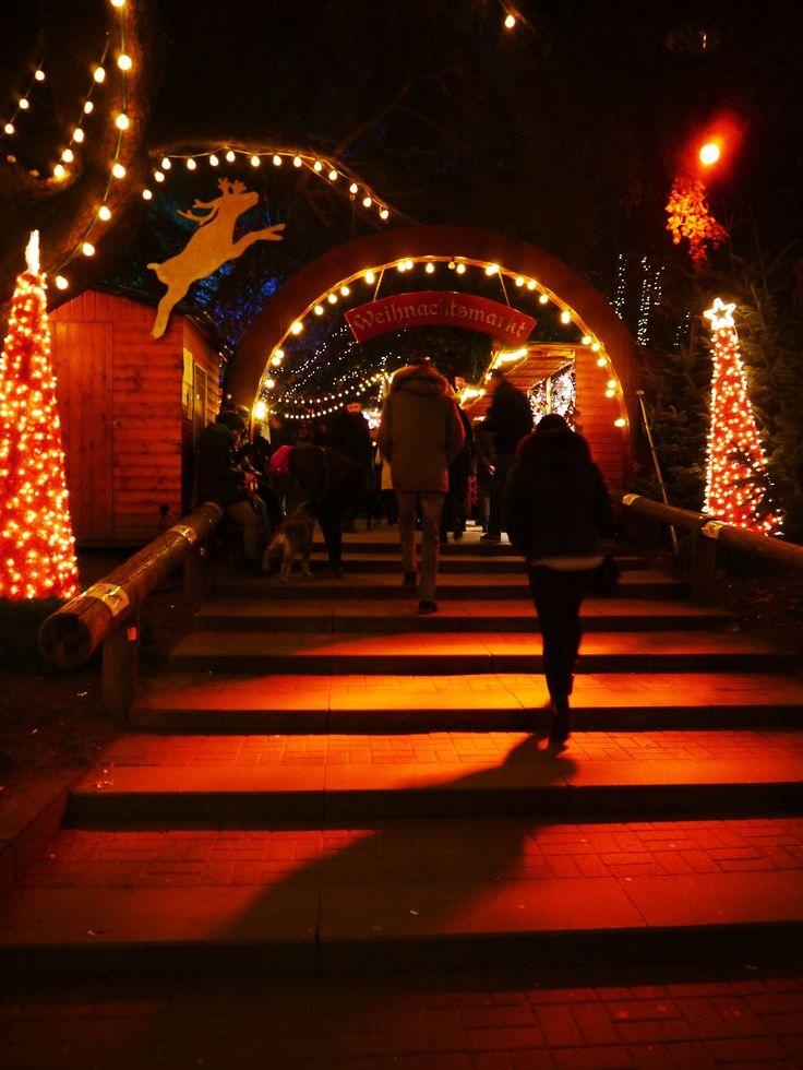Weihnachtsmarkt am Stadtgarten in Köln