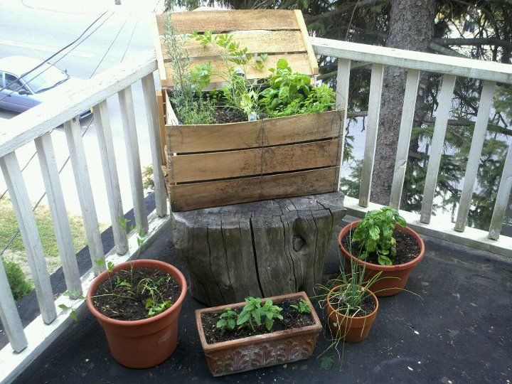 Elegant Porch Herb Garden   ... On My Porch, And With Him, A