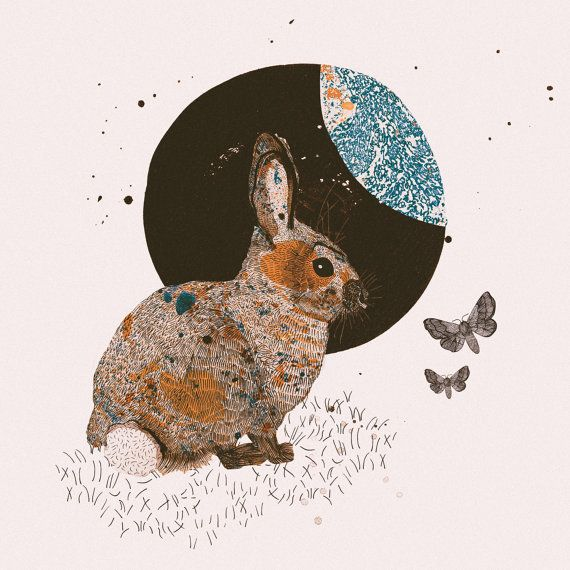 Woodland Forest Series, Illustration Art Giclee Print 'Rabbit & Moth' — Nat Carroll