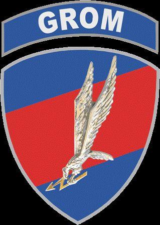 Jednostka Wojskowa GROM. Polish Delta Force. GROM: Grupa Reagowania Operacyjno-Manewrowego (English: Group (for) Operational Maneuvering Response)