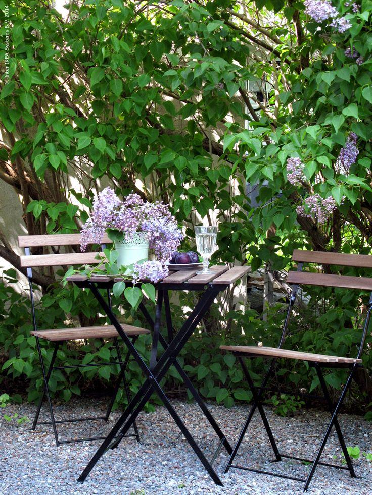 På mors dag slår syrenerna ut i full blom. Prunkande och skirt violetta väcker de minnen av högtidliga skolavslutningar och små händer hållandes en bukett till fröken. Och som mamma känner man sig lite extra rörd vid tanken!