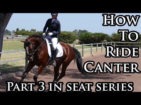 The Effective Seat at Canter (with GoPro) - Dressage Mastery TV Ep11 - YouTube