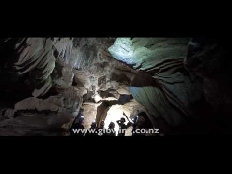 Glowing Adventure Eco-Tour - Book your glow worm cave tour online