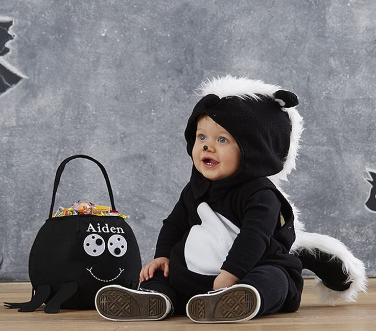 Little skunk: http://www.stylemepretty.com/living/2015/10/15/adorable-diy-baby-costumes/