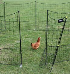 Movable fencing. We have this fence for our chickens and it is durable and easy to reconfigure when you need to! We are very happy with it!!