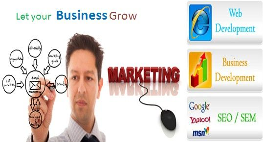 How Efficient The Online Marketing Consultants Are In Providing Business Solutions In Sydney?