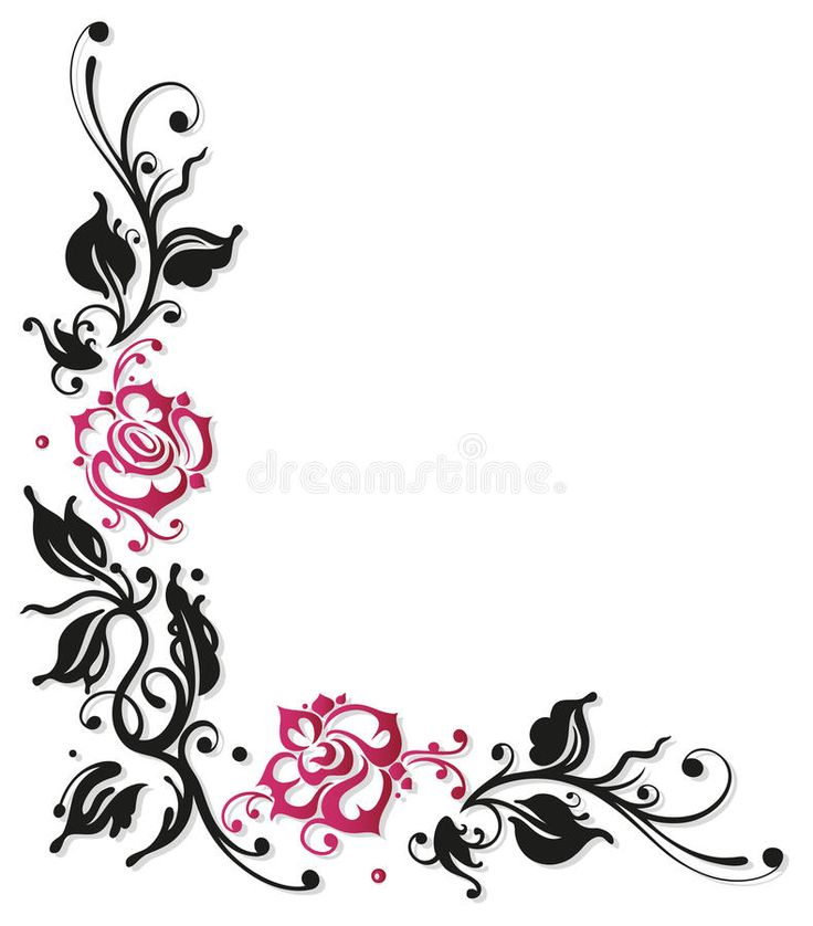 Rose, flowers, border. Black and pink roses, vector ...