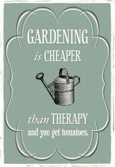 Gardening is cheaper than therapy...and you get tomatoes