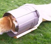 """Day 21: Make a dog agility chute. Also see other ideas on """"Dog Agility"""" board so there are more activities for Cooper to do."""