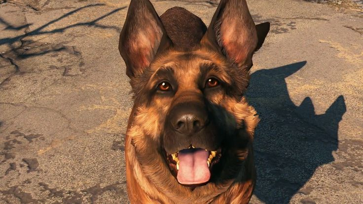 It's #NationalDogDay! Here are the top 15 best dogs in video games for when you need a little four-legged friend. http://twinfinite.net/gallery/top-dogs-video-games/10?utm_content=bufferaa630&utm_medium=social&utm_source=pinterest.com&utm_campaign=buffer