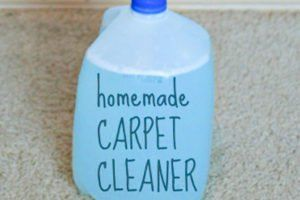 Cleaning Car Carpet Effectively And Efficiently Car