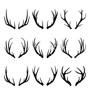 Antlers are extensions of the skull grown by members of the deer family. Description from imgarcade.com. I searched for this on bing.com/images