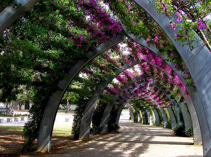 Brisbane, Australia | 45+ Of The World's Most Magical Streets Shaded By Flowers And Trees  Posted By MMK on Jan 25, 2015