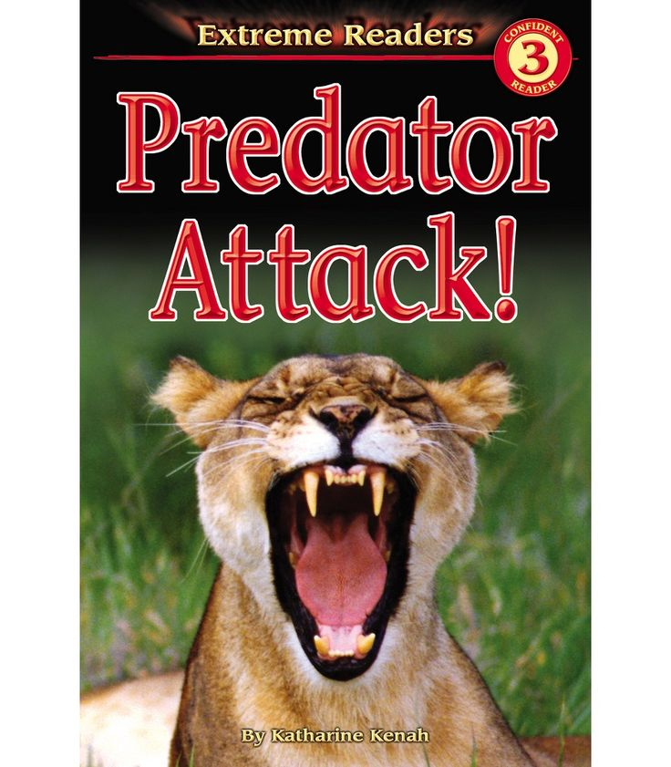 Dare to read the extreme!  The Predator Attack! Extreme Reader introduces amazing facts about some of the most fascinating, and fierce, predators on earth including, alligator, bald eagle, barracuda, polar bear, komodo dragon, gray wolf, Tasmanian devil, spitting cobra, cheetah, great white shark, brown bear, badger, osprey, and Bengal tiger. This unique level 3 nonfiction reader for grades 1 and 2 learners will help them explore reading on their own. Dramatic photographs, graphic…
