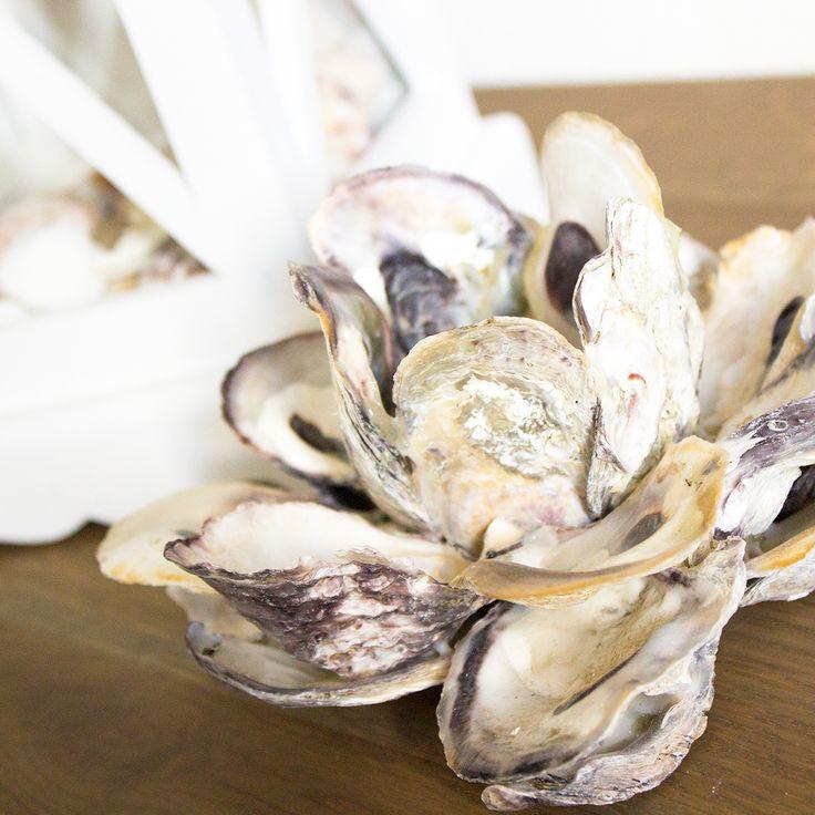 QueenoftheSea.nl Kandelaar van oesterschelpen #seashells #shells #schelpen #schelp #diy #interior #interieur #decor #nautical #oyster #home #ocean #sea #mermaid #inspiration