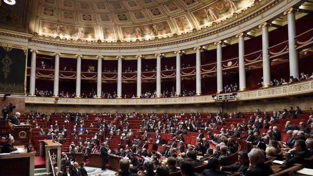 Biodiversité: l'Assemblée vote l'inscription du préjudice écologique dans le code civil