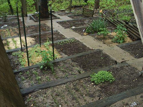 backyard hill inspiration garden pinterest