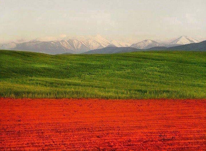 Bulgarian flag colors