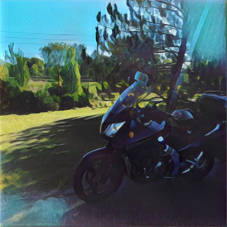 Painted vstrom