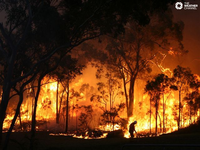 Black Saturday: Bush fires in Australia in 2009.   Read more here: http://en.wikipedia.org/wiki/Black_Saturday_bushfires. I was watching a CNN interview with Colin Hay, once lead singer of Men At Work, and solo artist, and he mentioned Black Saturday. I remember reading about it at the time... so devastating.   http://econews.com.au/wp-content/uploads/2011/07/bushfires.jpg