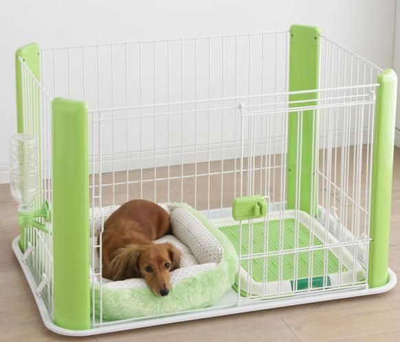 Starter Kit for your new puppy! (Crate, Bed, Water Bottle Dispenser & wee wee pad tray)
