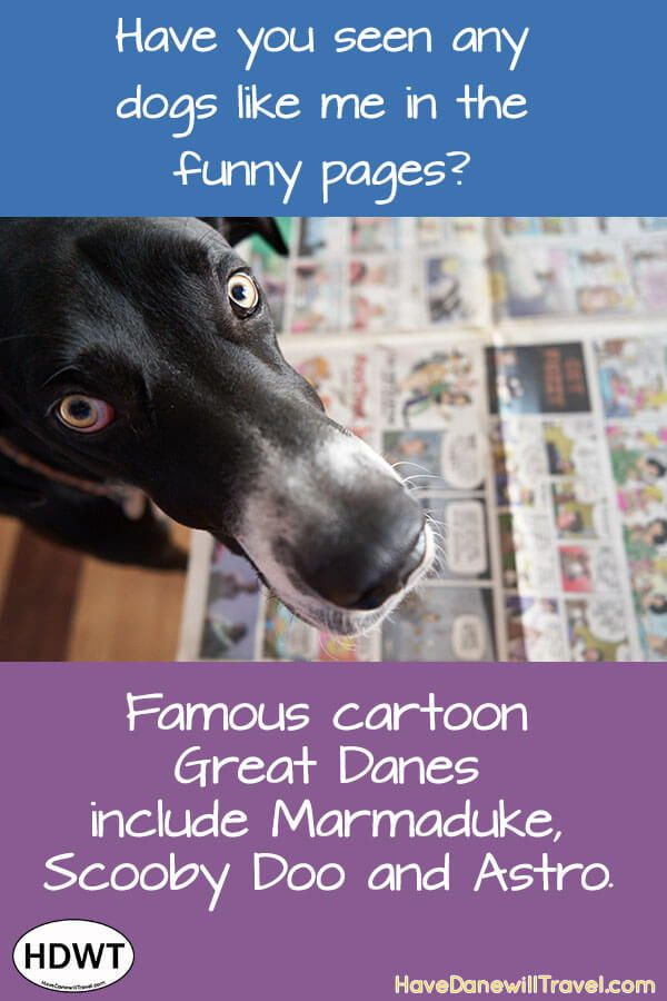 Three Of The Most Famous Cartoon Great Danes Have Dane Will Travel Great Dane Famous Cartoons Dane