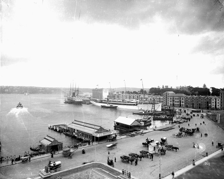 Stunning Image of Circular Quay (the right name) in Sydney Harbour in 1891