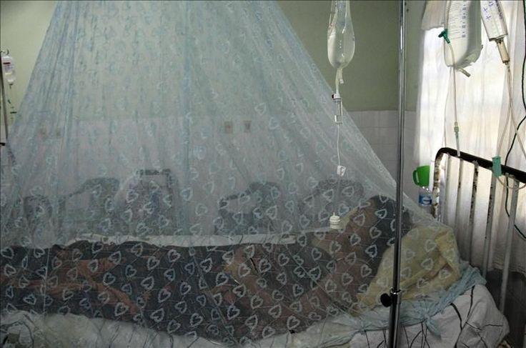 ¿Se considera el dengue una enfermedad laboral?
