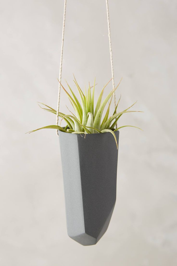 Crystal-Cut Hanging Planter