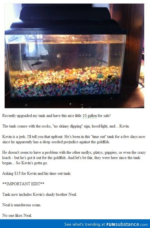 Kevin can't play nice with the goldfish!
