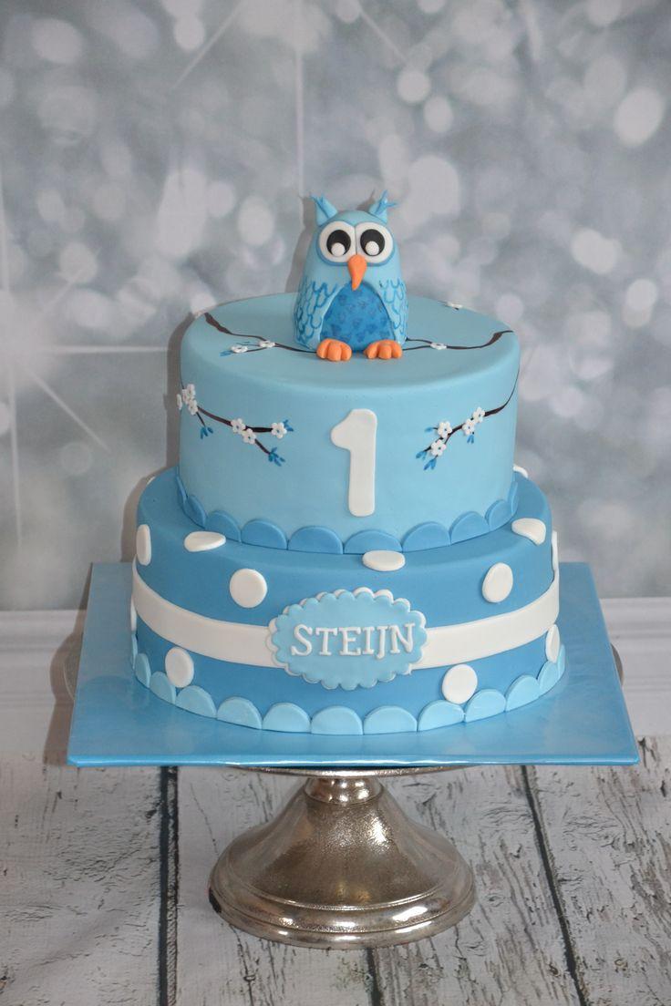 blue owl cake  blauwe uil taart