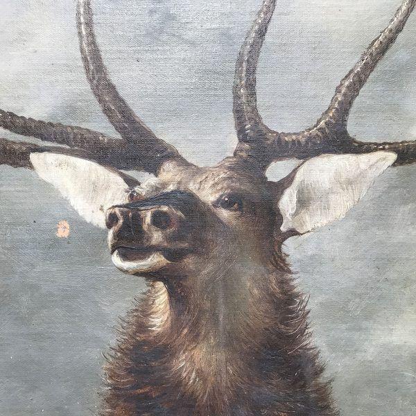 Coppia di Ritratti di Cervi dipinti ad olio su tela
