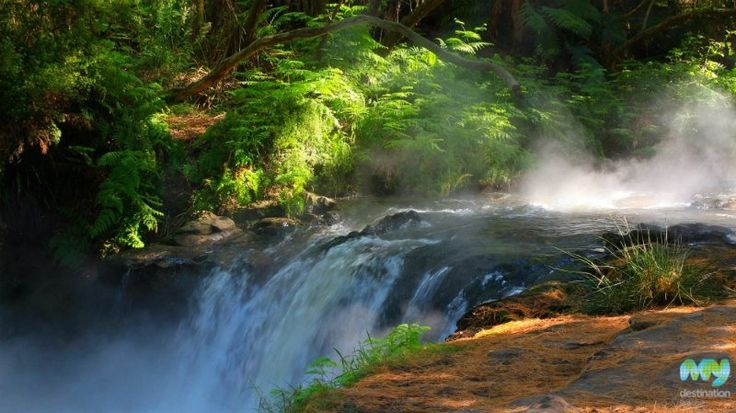 Kerosene Creek, Rotorua  http://www.mydestination.com/rotorua/things-to-do/1156536/kerosene-creek